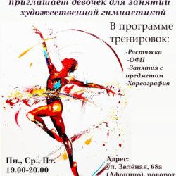 Художественная гимнастика в Афонино